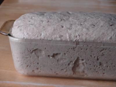 risen dough in loaf pan