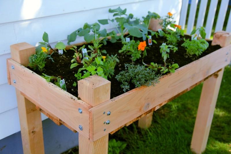 Cedar Raised Bed On Legs Gardening Outdoor