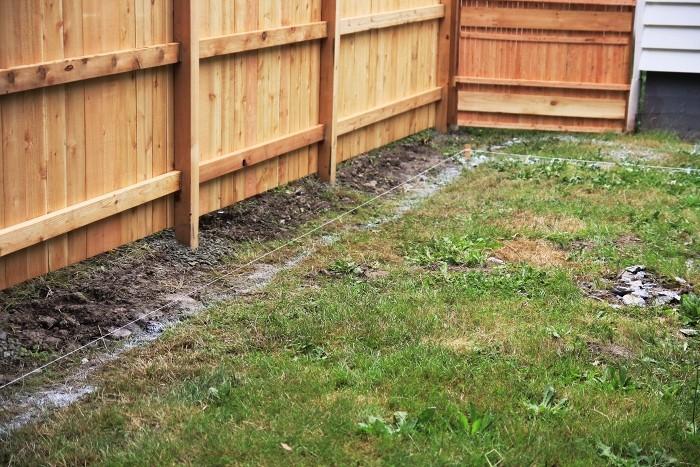 how to fix a swampy backyard