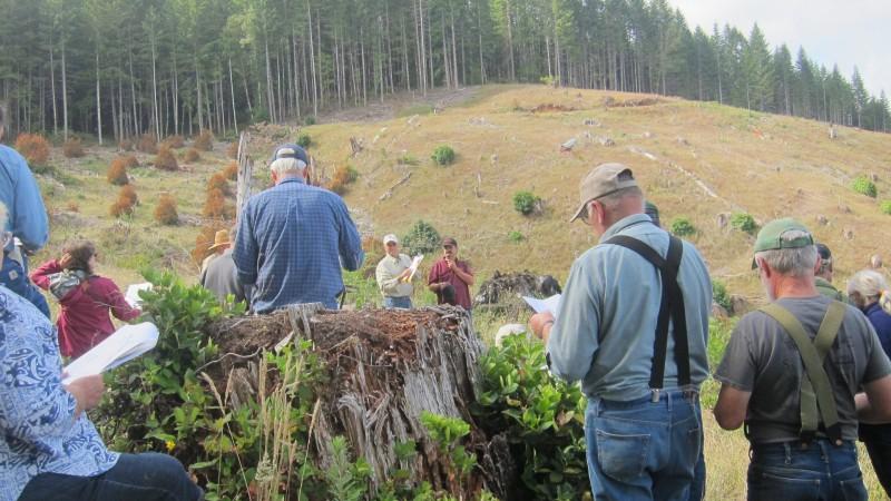 community tonry tree farm - 28 images - t e r r a f l u x ...